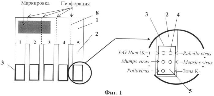 Набор для многопрофильного иммунологического анализа антител в препаратах крови