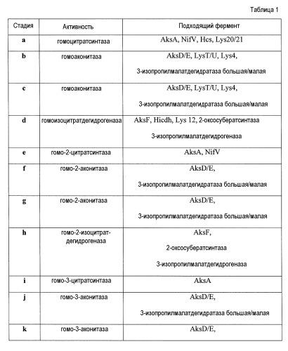 Биологический синтез дифункциональных алканов из альфа-кетокислот