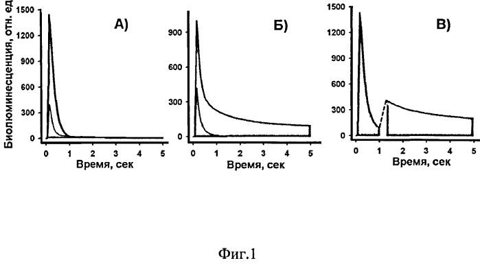 Способ одновременного определения двух аналитов биолюминесцентным молекулярным микроанализом