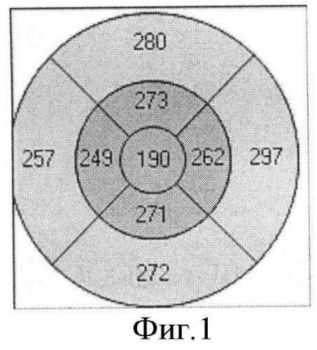 Способ дифференциальной диагностики различных стадий болезни штаргардта