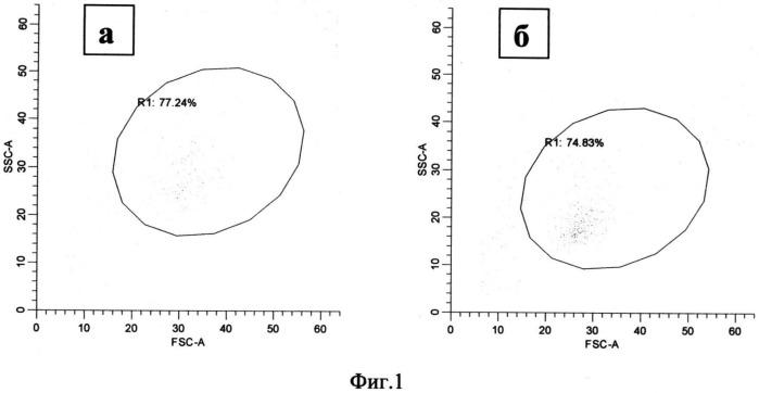 Способ модификации моноцитов периферической крови для повышения их паракринной активности при аутологической трансплантации