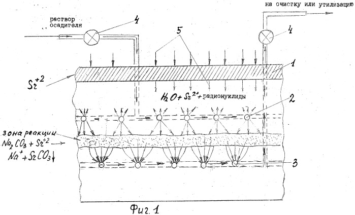 Способ рекультивации почв, загрязненных радионуклидами
