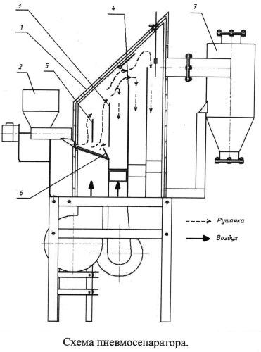 Пневмосепаратор для разделения зерновых материалов