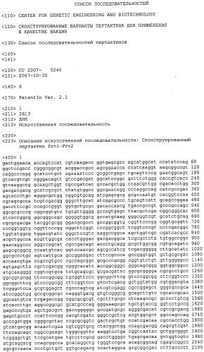 Полинуклеотидная последовательность, кодирующая сконструированный белок пертактин, вектор, включающий такую последовательность, и вакцинные композиции, содержащие белок пертактина или вектор