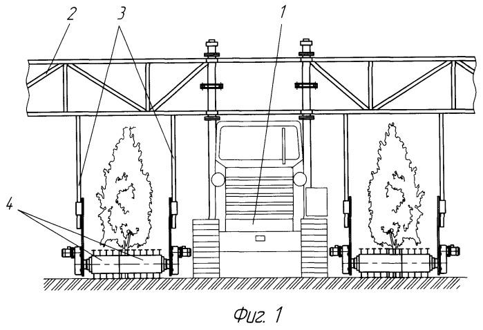 Устройство для обработки межкустовых полос виноградников