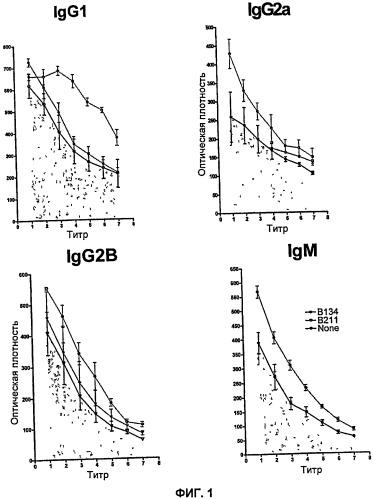 Иммуномодулирующие олигопептиды