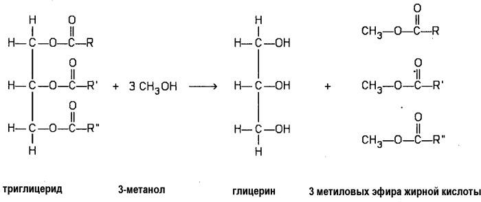 Совмещенный способ получения биотоплив из различных типов сырья и родственных продуктов