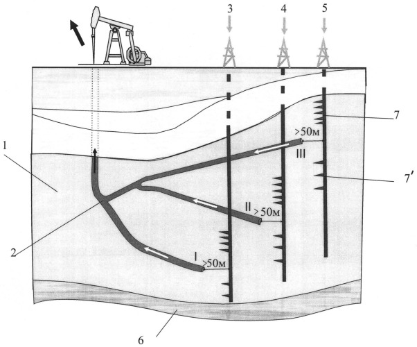 Способ разработки залежей нефти с применением разветвленных горизонтальных скважин
