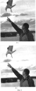 Способ автоматического ретуширования снимков