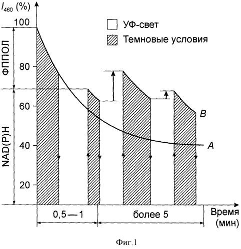 Экспресс-способ определения риска злокачественности клеток