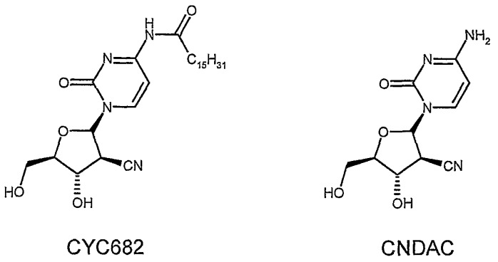 Получение промежуточных соединений, используемых в синтезе 2-циано-2-дезокси-n4-пальмитоил-1-бета-d-арабинофуранозилцитозина
