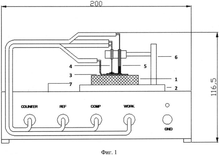 Способ детекции специфических последовательностей нуклеиновых кислот (варианты) и устройство для его осуществления