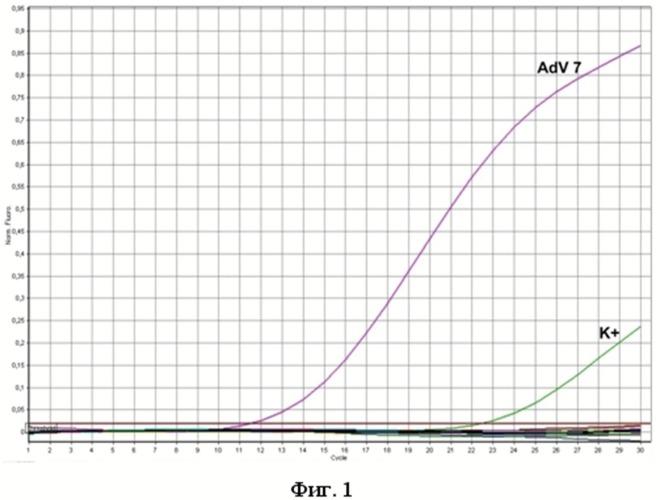 Набор олигодезоксирибонуклеотидных праймеров и флуоресцентно-меченого зонда для идентификации днк аденовируса серотипов 3,4,7,14,21 методом гибридизационно-флуоресцентной полимеразной цепной реакции