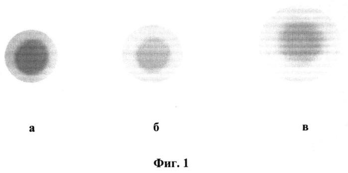 Способ хроматографического анализа органических веществ