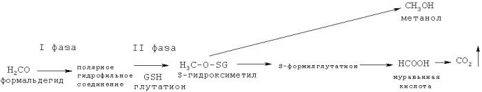 Способ оценки негативного воздействия формальдегида, поступающего с атмосферным воздухом, на нарушение конъюгационной и элиминационной функции глутатионовой системы у детей