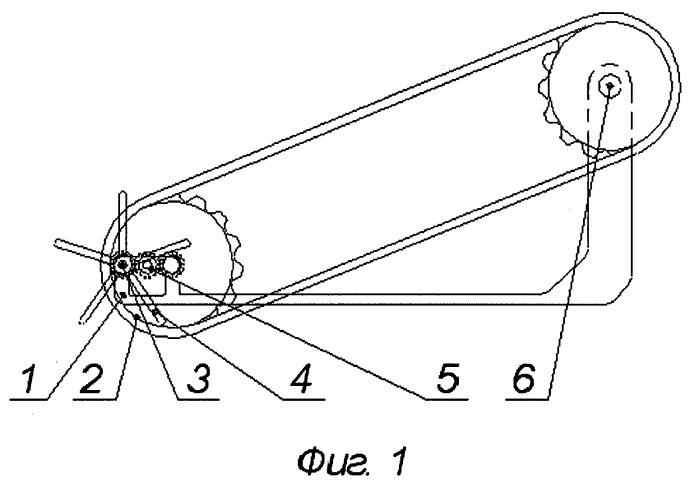 Питатель к погрузчику корнеклубнеплодов непрерывного действия