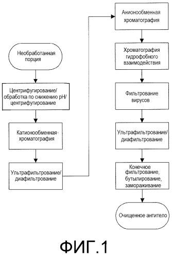 Способ получения препарата антитела против il-18 или его антигенсвязывающей части (варианты)