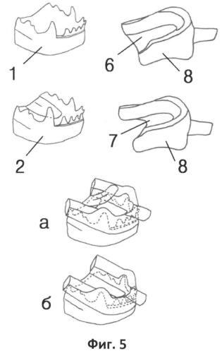 Способ изготовления оттискной ложки для снятия анатомических оттисков с челюстей животных