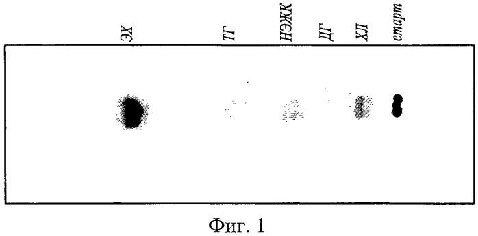 Способ количественного определения классов липидов и подклассов фосфолипидов в биологических материалах