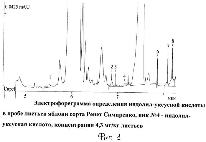 Способ определения индолил-уксусной кислоты методом капиллярного электрофореза