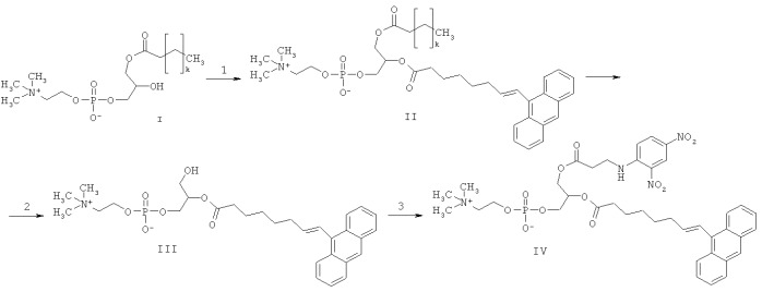 Флуоресцентный зонд и тест-система для определения активности фосфолипазы а2