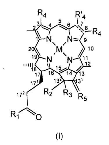 Конъюгаты rgd-(бактерио)хлорофилл для фотодинамической терапии и визуализации некротических опухолей