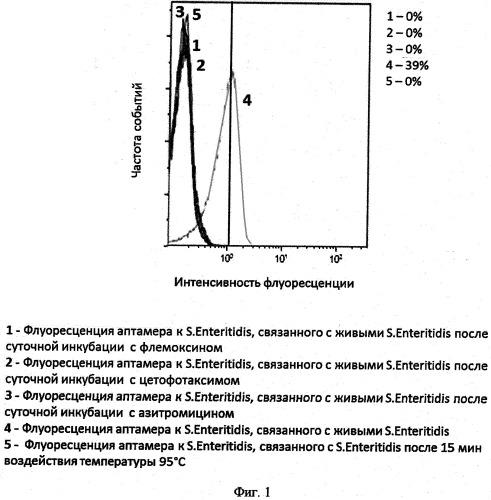 Способ определения чувствительности микроорганизмов рода salmonella к антибактериальным препаратам