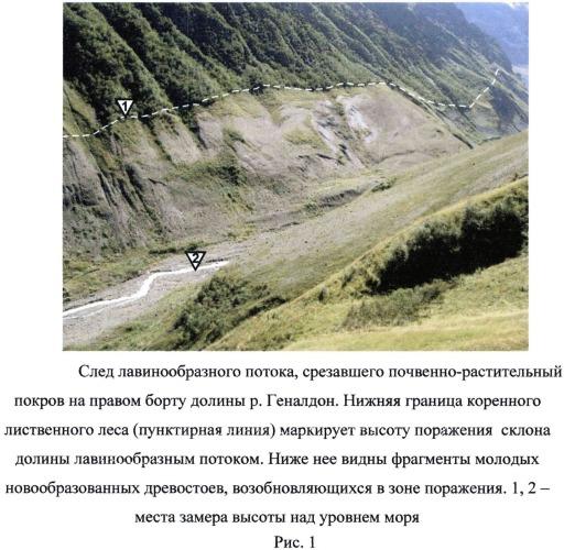 Способ определения поражения горной долины лавинообразным потоком
