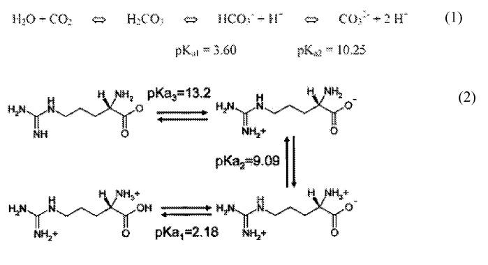 Способы производства высококонцентрированного раствора бикарбоната аргинина при высоком давлении