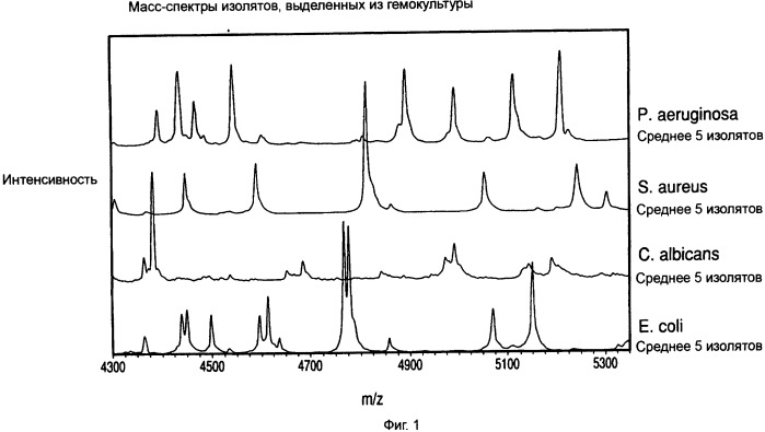 Способы разделения, характеристики и(или) идентификации микроорганизмов с помощью масс-спектрометрии