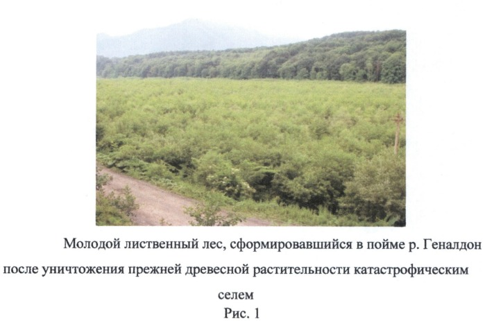 Способ определения поражения селями горной долины