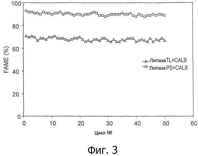 Способ получения сложных метиловых эфиров жирных кислот с использованием смеси липаз (варианты)