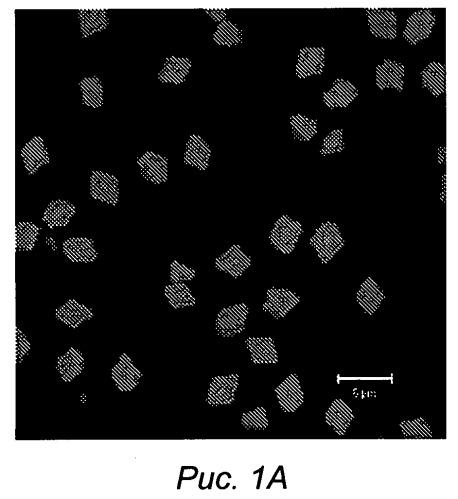 Способ формирования микрочастиц