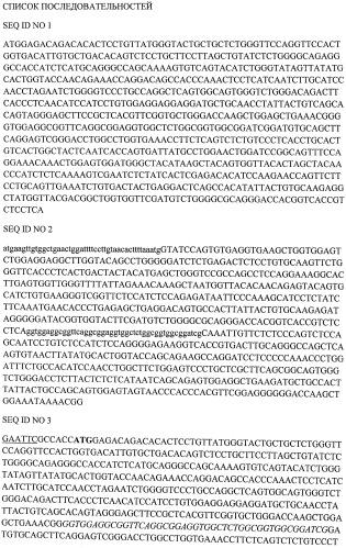 Одноцепочечное антитело к раково-эмбриональному антигену, химерный мономолекулярный т-клеточный рецептор, вектор и клетка-хозяин для обеспечения экспрессии такого рецептора и способ диагностики или лечения.
