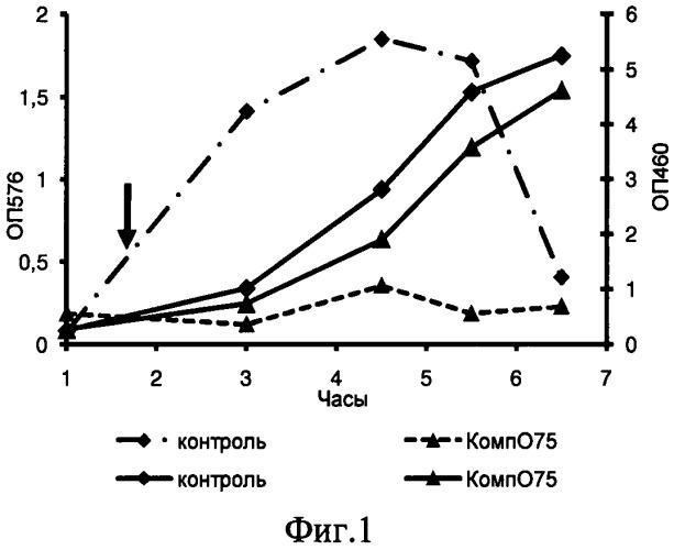 Средство, ингибирующее жизнедеятельность бактерий escherichia coli o75 №5557 (варианты)