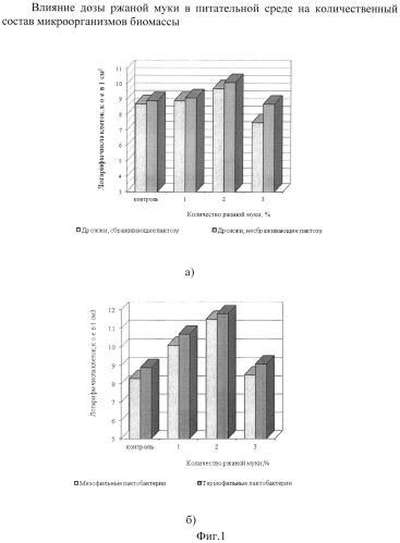 Способ получения бактериального концентрата и применение его в качестве биологически активной добавки к пище или закваски прямого внесения для курунги