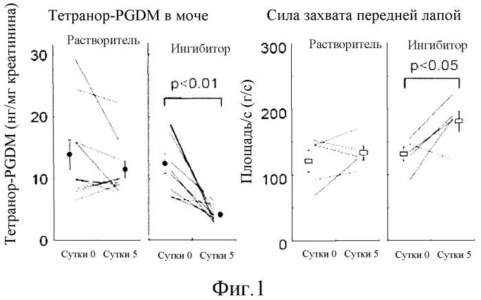Способ детекции дегенеративных мышечных заболеваний и способ определения терапевтической эффективности при заболеваниях