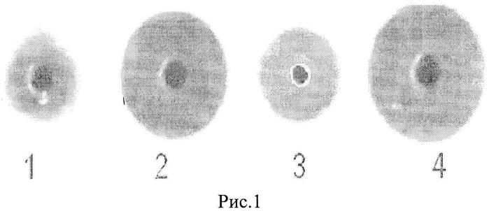 Способ выделения спермаспецифического ингибитора трипсина человека