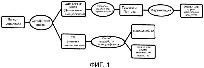Способ получения моносахаридов или этанола вместе с сульфинированным лигнином из лигноцеллюлозной биомассы