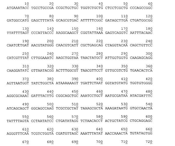 Рекомбинантная плазмидная днк pest877, детерминирующая экспрессию полипептида с активностью эстеразы psychrobacter cryohalolentis к5т на поверхности клеток escherichia coli, и штамм бактерий escherichia coli bl21(de3)plyss/pest877-продуцент полипептида с активностью эстеразы psychrobacter cryohalolentis к5т на поверхности клеток
