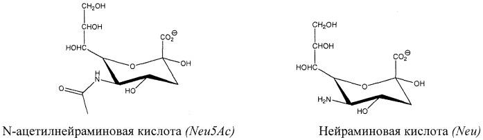 Способы, относящиеся к модифицированным гликанам