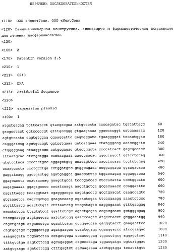 Кодон-оптимизированная кднк, кодирующая дисферлин человека, генно-инженерная конструкция, рекомбинантный аденовирус и фармацевтическая композиция для лечения дисферлинопатий