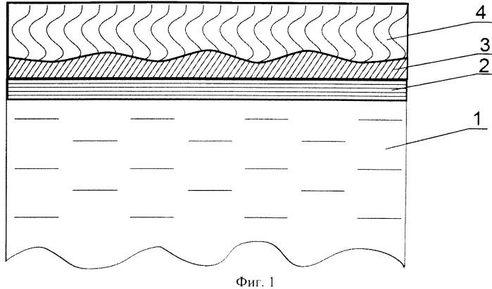 Биологический сенсор и способ создания биологического сенсора