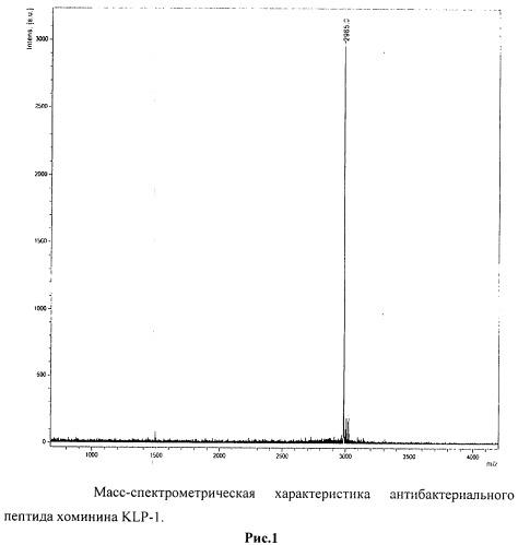 Антибактериальный пептид хоминин klp-1 широкого спектра действия