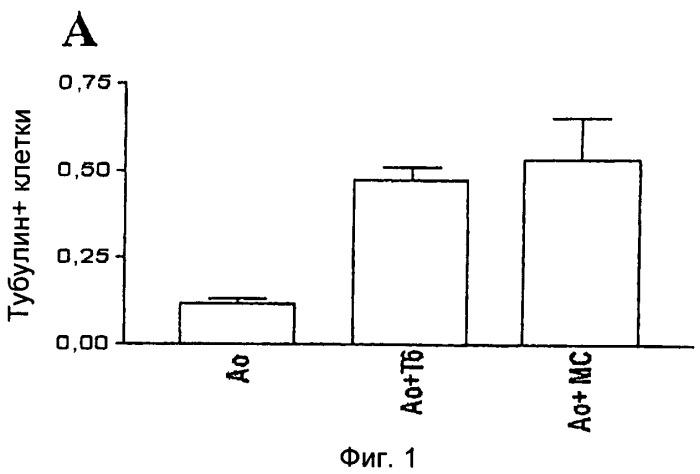 Применение программы противоположной дифференцировки клеток (ппдк) для лечения дегенерировавших органов в патологическом состоянии