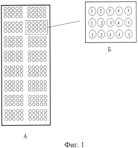 Биологический микрочип для выявления и многопараметрического анализа противохолерных антител