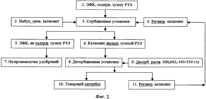 Способ извлечения редкоземельных элементов из экстракционной фосфорной кислоты при переработке хибинских апатитовых концентратов
