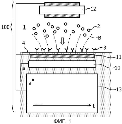 Способ и устройство для определения количества магнитно меченных целевых компонентов