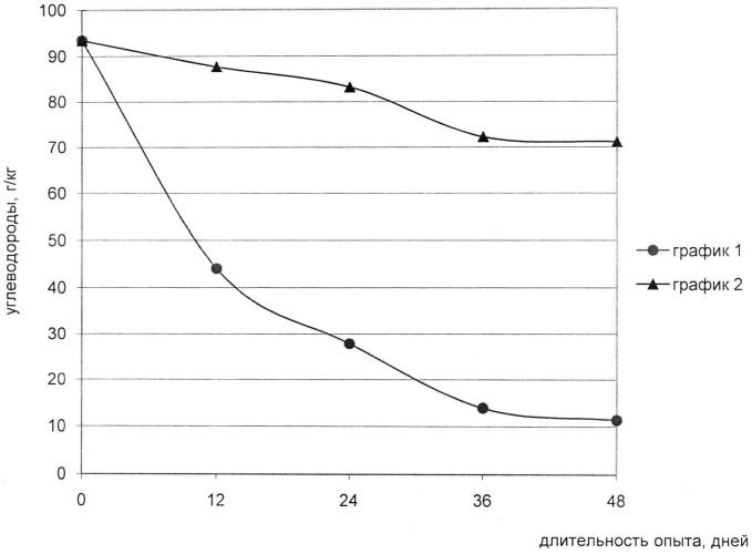Штамм бактерий gordona sp. - деструктор нефтяных углеводородов