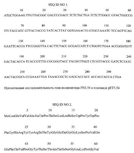 Рекомбинантная плазмидная днк рет3.54, кодирующая полипептид fn3.54, взаимодействующий с фактором некроза опухолей человека, и штамм бактерий escherichia coli - продуцент полипептида fn3.54, взаимодействующего с фактором некроза опухолей человека